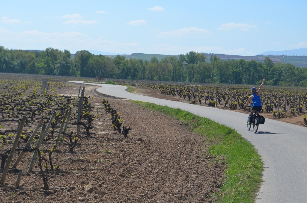Our typical biking path. No cars, just vineyards.